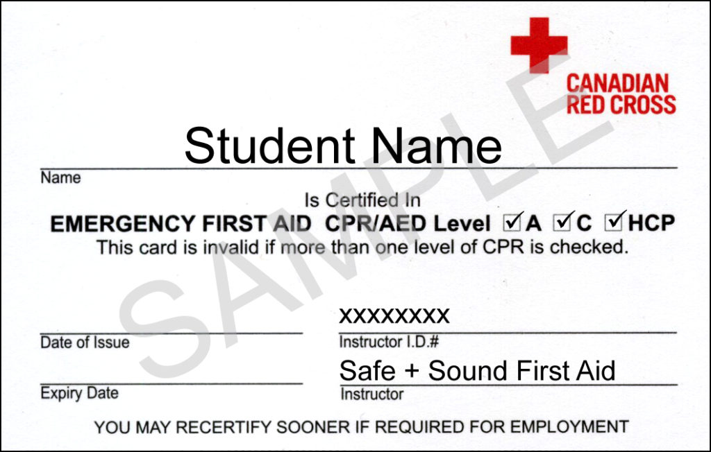 Standard first aid courses aed cpr online certification efa wallet certificates first aid yadclub Gallery